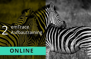 emTrace Aufbautraining Level 2 online Webucation