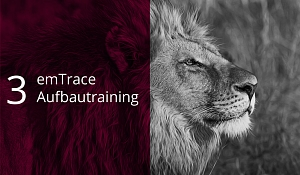 emTrace®-Aufbautraining (Level 3) - Emotionscoaching auf Identitätsebene